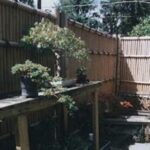 Bamboo fence with stone wall foundation for bonsai collection, Camp Hill