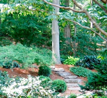 Graceful_Natural_Garden_Design___Hanselman_Landscape