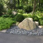 Rain garden water reservoir in wooded setting