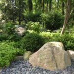 Rain garden recycles water to woodland, Lancaster