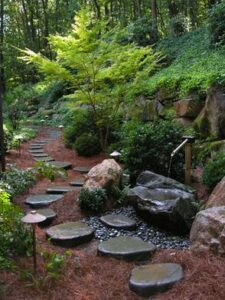 Woodland path - stepping stones 2