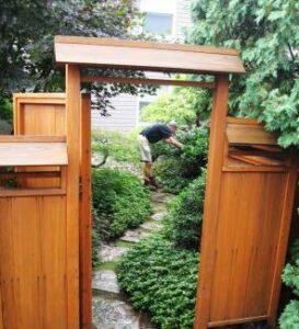 courtyard-pruning