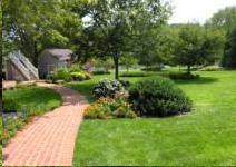 irrigation-pic1