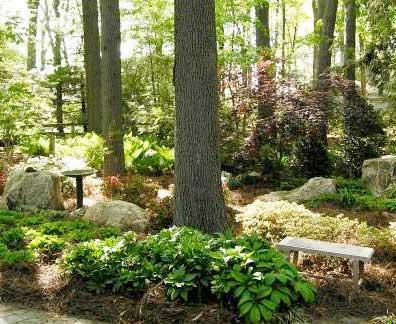 natural-garden-inset