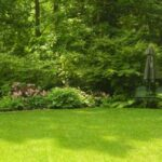 Lawn dais surrounded by natural plantings