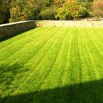 Irrigated sport lawn terrace