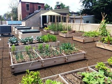 Irrigation hanselman landscape and gardens for Terrace vegetable garden