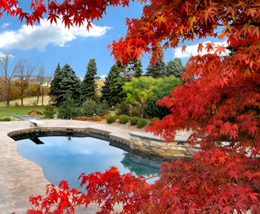 Image result for pool in autumn