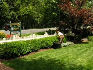Brittany's Hope garden care