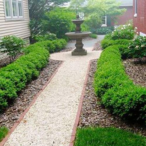 courtyardgardens
