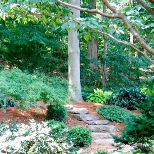 naturalgardens