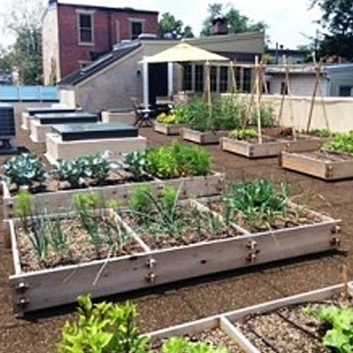 Rooftop And Vegetable Gardens Hanselman Landscape And Gardens