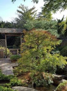 j-garden-in-philly-maintenance