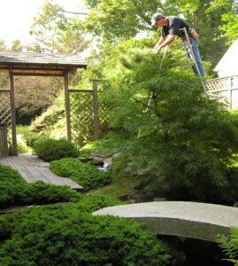 japanese-garden-maintenance-1