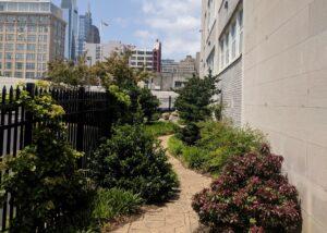 City courtyard garden, Chinatown, Philadelphia, PA