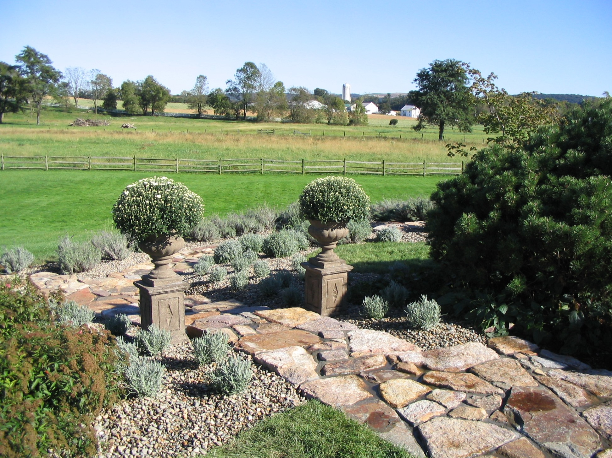 French Lavender garden and rustic stone paths complement farmhouse landscape, Morgantown, PA