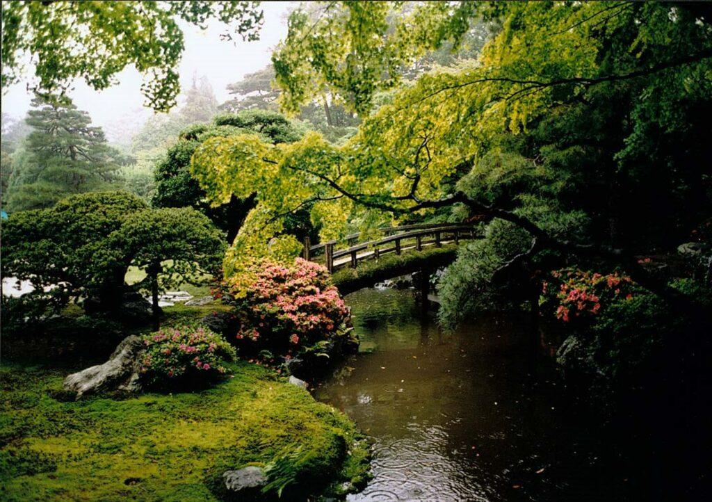 In the rain at Kyoto Gosho, Kyoto, Japan