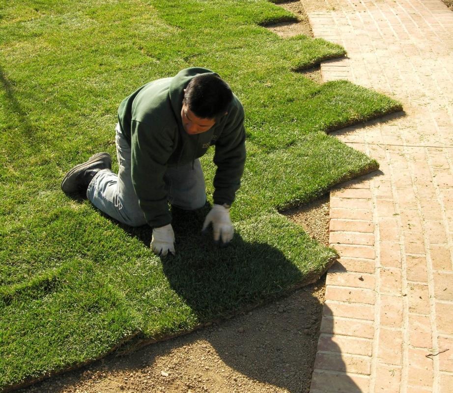 Installing sodded lawn, Elizabethtown, PA