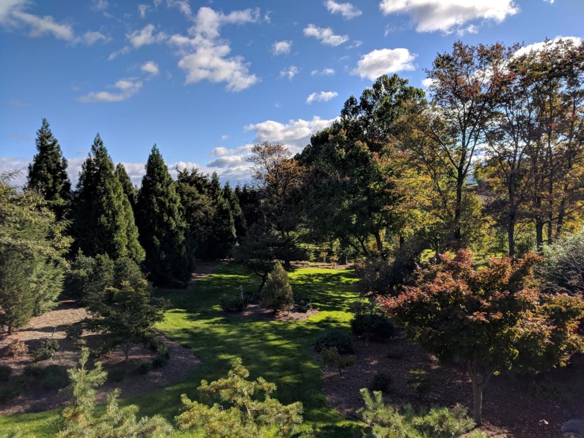 Landscaped garden glade celebrates light and shade, Manheim, PA