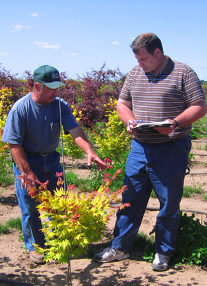Sourcing best tree cultivars from knowledgeable specialists, Oregon