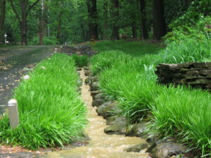 Natural stone drain comfortably manages torrent in rainstorm, Lancaster, PA