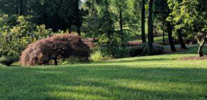Rural country lawn, Manheim, PA