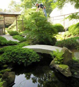Japanese garden outside home office window, Merion Station, PA