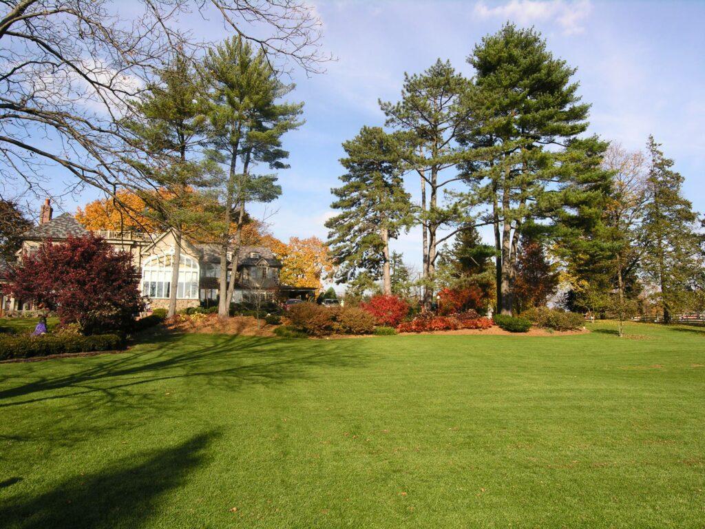 Seeded lawn, Elizabethtown, PA