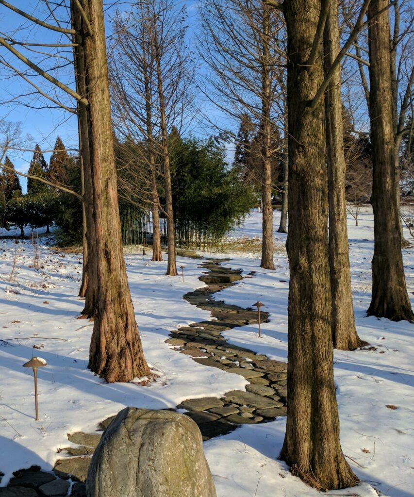 Rustic natural stone path meanders through winter woodland, Manheim, PA