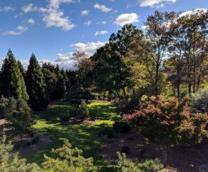 Woodland gardens as part of country landscape, Manheim, PA
