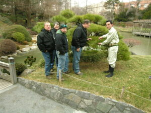Learning from the best: Nobuhiko Kobayashi from Adachi Museum of Art offers Pine pruning instruction