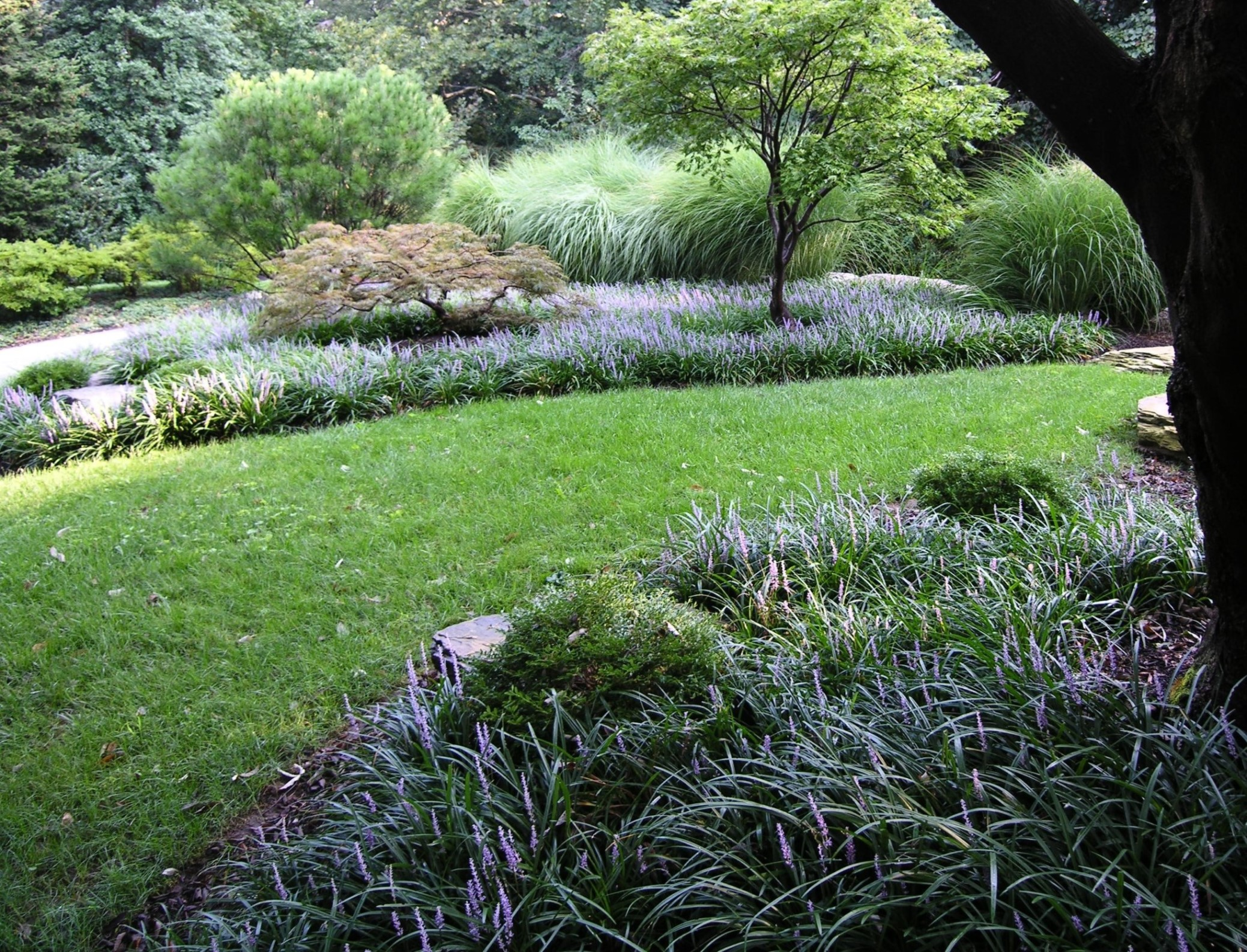 Weed-suppressing groundcovers can be an effective and attractive alternative to mulch, Villanova, PA