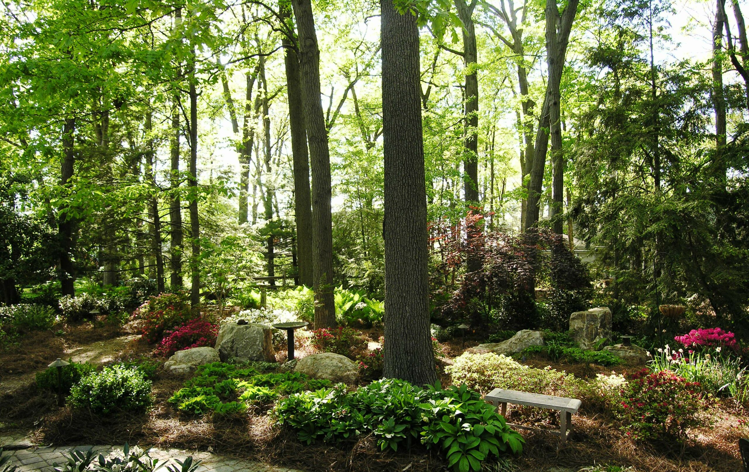 Woodland gardens can be much easier to weed than their sunny counterparts, Camp Hill, PA