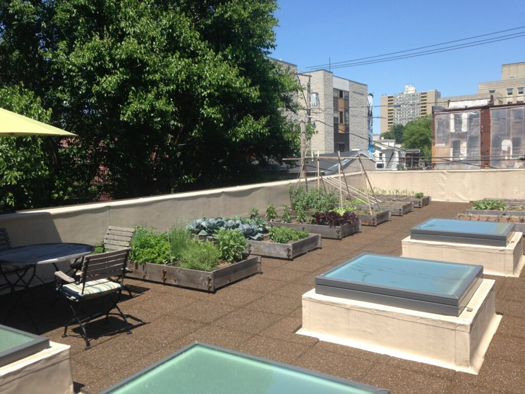 Rooftop vegetable garden features permeable pavers for effective water movement and comfortable walking, Harrisburg, PA