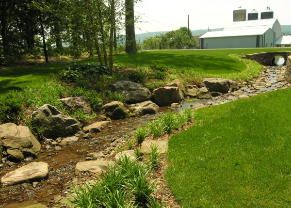 Enhancing eroded stream bank in farm country with naturally-arranged boulders, Morgantown, PA