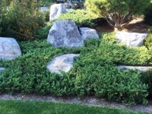 Hillside gardens often benefit from a combination of stone and woody plants to keep work to pleasant tasks such as seasonal pruning, Centerville, PA
