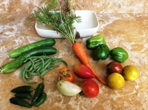 Sample of first-year crop from rooftop vegetable garden, Harrisburg, PA