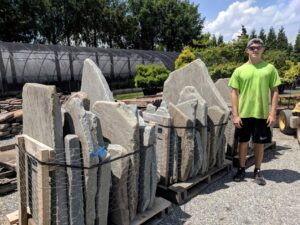 Ready-to-use tumbled Bluestone slabs will become large steps across lawns, Manheim, PA