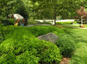 Partnering with professional help a few times per year, is one of the easiest ways to enjoy a garden space, Elizabethtown, PA