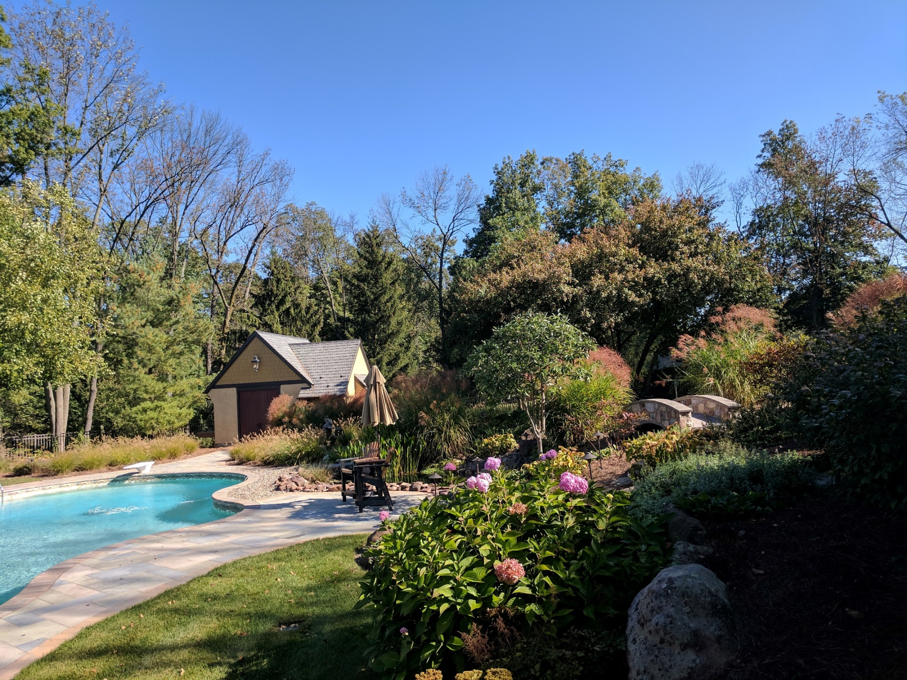 Meadow plantings naturalize pool in woodland clearing, Denver, PA
