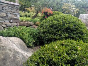 Boulders and stone walls make perfect foil for garden plantings, Manheim, PA