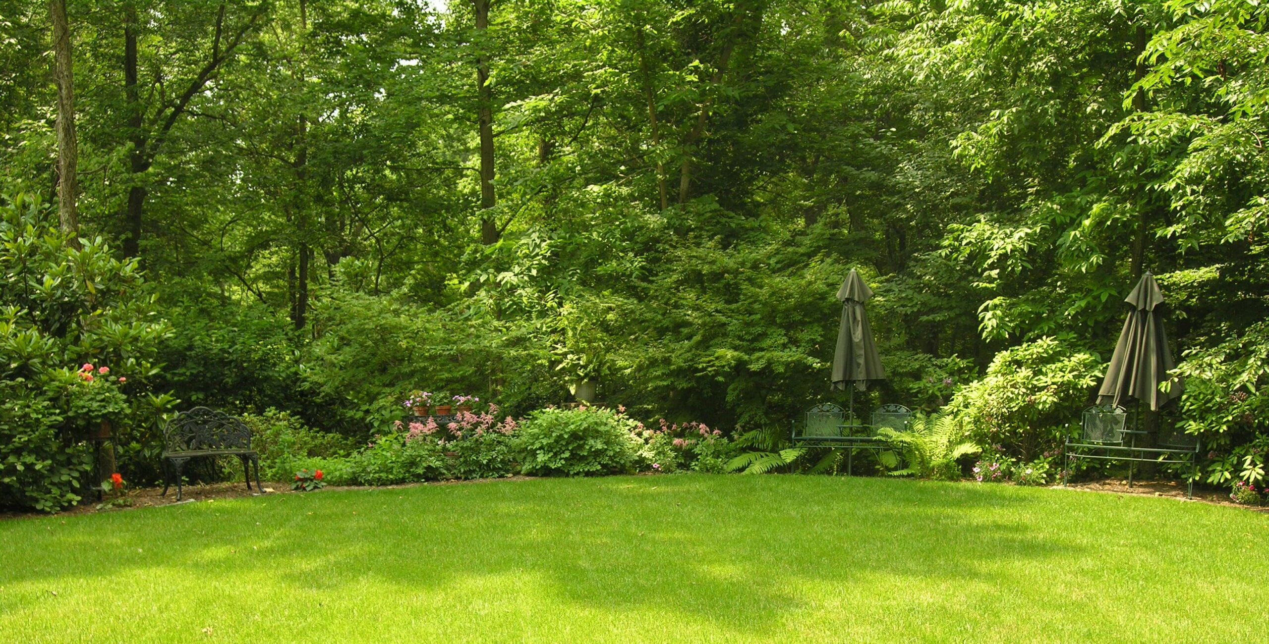 Lawns can be delightful foils beside woodland shade, Lancaster, PA