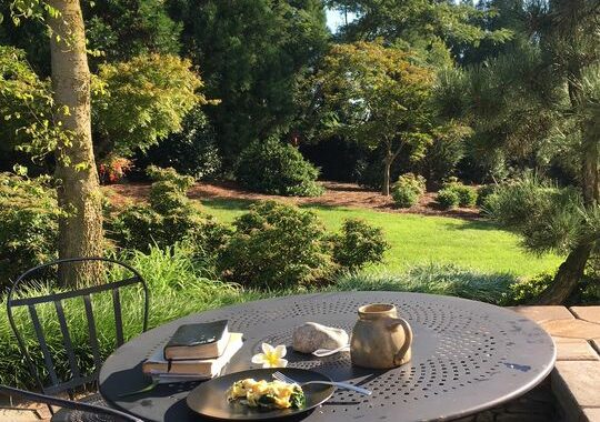 GARDEN VIEWS: Love the One You're With! 138038153 5165892153428583 1003845493514502422 n