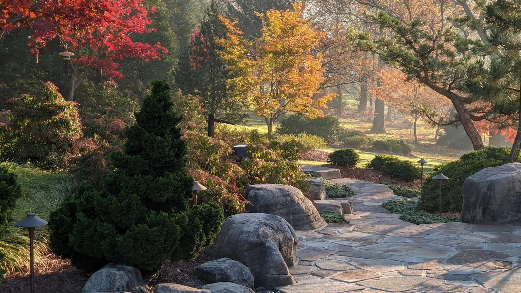 Hanselman Landscape and Gardens Patio fall hero 1920x1080 2
