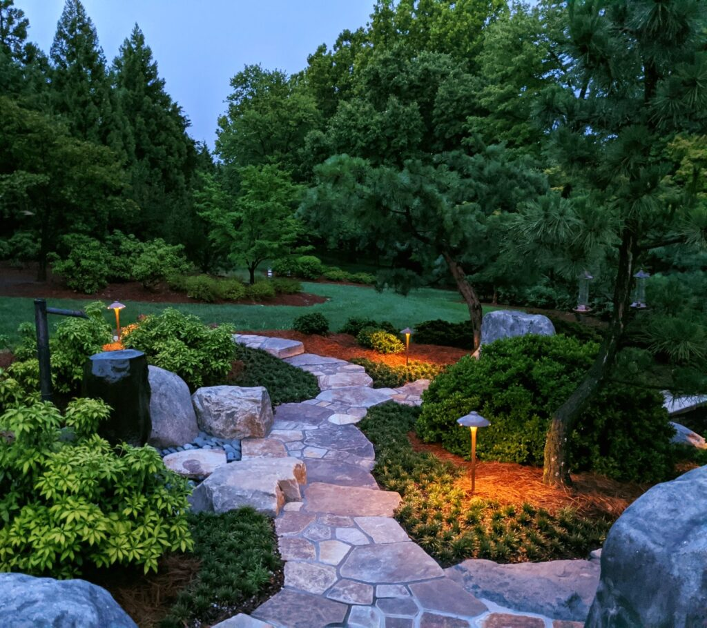 Garden Views in the Gloaming 240595789 6372063916144728 516648206211586925 n