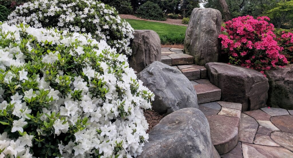Hardscape and Stonework Service (No-Index) Extra for consideration